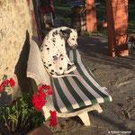 Kurt Russel vom Furlbach in Italien...26.10.2017