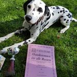Wir gratulieren unserer hübschen Ida Indiana vom Furlbach zum 3. Platz beim Hunderennen in Baden Baden 09.04.2017