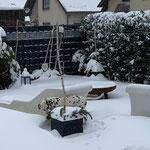 Loriot vom Furlbach...08.02.2021