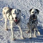 June Carter vom Furlbach im Wellness Urlaub....15.02.2017