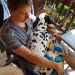 Ida indiana vom Furlbach ist auch ein Schoßhund...14.08.2017