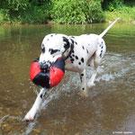 Kim Wilde vom Furlbach mit Ihrem Wasserball...05.07.2017