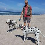 Blade vom Furlbach und Anny-Chamei vom Furlbach beim Strandgang im Urlaub...16.07.2017