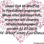 """LUA """"M-Wurf vom Furlbach"""" ca. 11.07.2019"""
