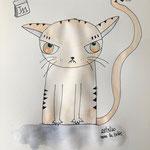 J11 confinement : mon chat se demande quand on arrêtera de squatter chez lu