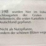 © Traudi – Wiesensteig