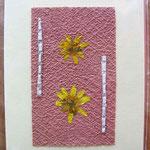 Foto  (c) Traudi   Blüten auf Tapetenrest