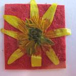 Foto  (c) Traudi   Kleine Blüte - ganz groß
