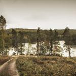 Hällingsjö, Zweden
