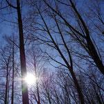 青空に映える太陽が眩しいです。