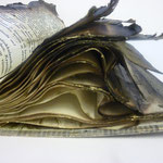 Anteeksi mutta sinulta lainaamani kirja paloi