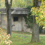 Elsass, 2008