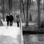 """Der englische Garten - Hier beginnt die Novelle """"Der Tod in Venedig"""" mit Gustav Aschenbachs Spaziergang, der ihm """"unter Tage so nötig war"""""""