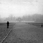 Buchenwald - ein Ort nationaler Schande