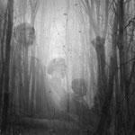 Buchenwald - am Ende stand der Roman des Dr. Faustus, der Deutschland in seiner Seele unbarmherzig, kalt und ohne Pathos beschrieb