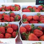 Erdbeerverkauf