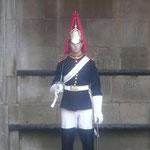 Horseguard