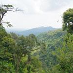 Im Dschungel von Kanchanaburi