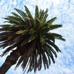 Impressionen aus Colonia del Sacramento