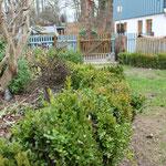 Hanggarten Obstgarten und Kräuterbeete trennen mit Buchsbaumhecke
