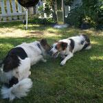 Ben und Benaja beim Spielen im Garten
