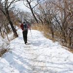 ②残雪の登山道、歩道はよく整備されているが、冬期間は積雪があるので凍結に注意(神奈川県伊勢原市)
