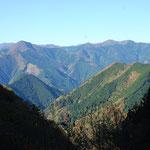 ①戦後、広葉樹からスギ、ヒノキの針葉樹に転換された奥多摩の山々、多摩地域の森林の6割が人工林(川乗山方面を望む)