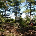 奥多摩・御前山の山頂、戦後に植えられたカラマツが成長して、雲取山方面の展望が困難になってきました。