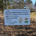 鹿嶺高原のシカ防護柵、キャンプ場になっている高原は、シカの食害を防ぐための柵を設置、シカの増加は南アルプス全域で大きな問題となっています。