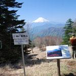 雁が腹摺山の展望、富士山を眺める絶景ポイントの一つ、眺望を確保するために前方の樹木管理がされています。