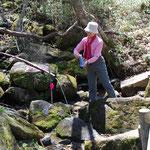 ⑥雁腹摺山の湧水、500円札の裏側の富士山の絵で有名な山、登山道わきの高い樋から溢れる冷たい水に感謝(山梨県大月市)
