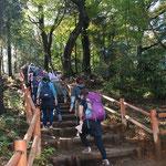 ②東京都、高尾山頂へのよく整備された登山道、山頂に快適なトイレも新設され、若い登山者でにぎわう