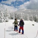 ③自然の厳しさを身近に体感できる北八ヶ岳、ガイド同伴で雪原を楽しく歩けるスノーシューが女性に人気(長野県茅野市)