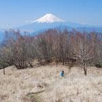 ④雁ヶ腹摺山からの富士山、五百円札の裏側の絵は、ここから撮られた写真を採用(大月市)