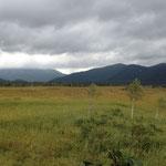 これから紅葉を迎える尾瀬の湿原