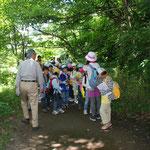 子どもたちの自然観察会