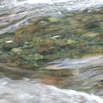 ⑥徳島県・勝浦川、四国は石鎚山、剣山などのある山国であり、四万十川、海部川など多くの美しい河川に恵まれています。