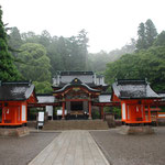 ⑥霧島神宮の森、高千穂峰の山麓にあり、ご神木のスギは樹齢約800年