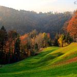 Zürcher Oberland