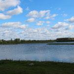 Einer der möglichen Ausblicke auf den Teich