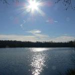 Sonne über´m Moorsee