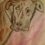 Hundegesicht, Aquarell, A3