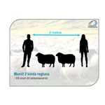 Isländischer Schafzüchterverein