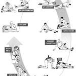 Enchaînement d'étirements passifs (source : http://soutienconcours.fr/concours_sport/les_etirements_musculation_concours_sport.htm)