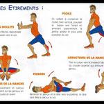 Détail pour chaque muscle (source : http://uahvbollene.e-monsite.com/pages/conseils-de-coachs/les-etirements.html)