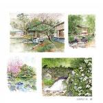 春の編 spring edition