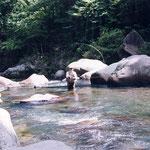 2004年、亀尾島川、郡上