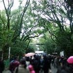正月2日、熱田の杜