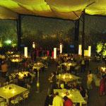 dj para bodas en Jardín Los Cedros iluminación en amarillo