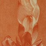 Rosskastanienblattknospe (Rötelstift) A3, ungerahmt